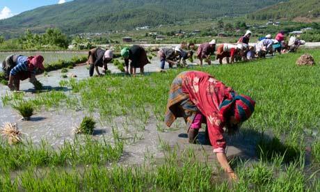 Bhutan farmers - Photograph: AlamySource: Guardian.co.uk