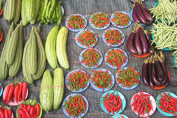 """""""Organic vegetables for sale in Argentina."""" Photo by: René Piamonte.  Source:Mongabay.com"""